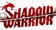 Cover von Shadow Warrior (2013)
